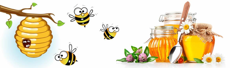 Il miele biologico prodotto da Vismara ha moltissime proprietà