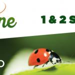 Billets gratuits pour Valériane à Namur
